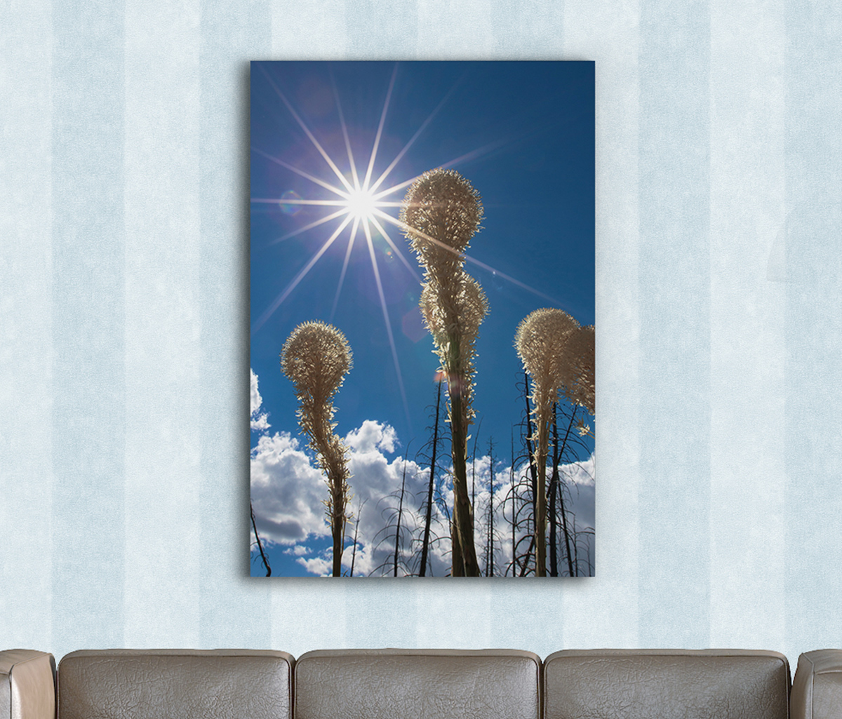 Bear Grass Sun Burst on Metal