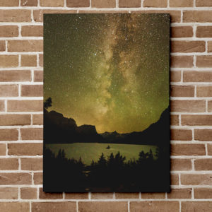 Wild Goose Golden Galaxy Canvas