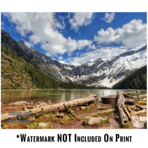 Avalanche Lake Photo Print