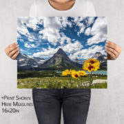 Blanket Flowers and Grinnell Point Photo Print