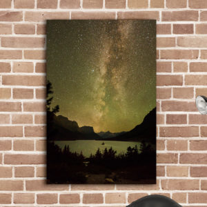 Wild Goose Golden Galaxy on Metal